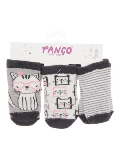 Panço Kız Bebek 3 lü Çorap 1813611194 Renksiz